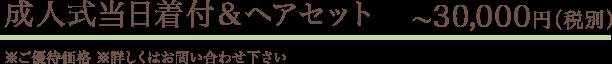 成人式当日着付&ヘアセット ~30,000円(税別)